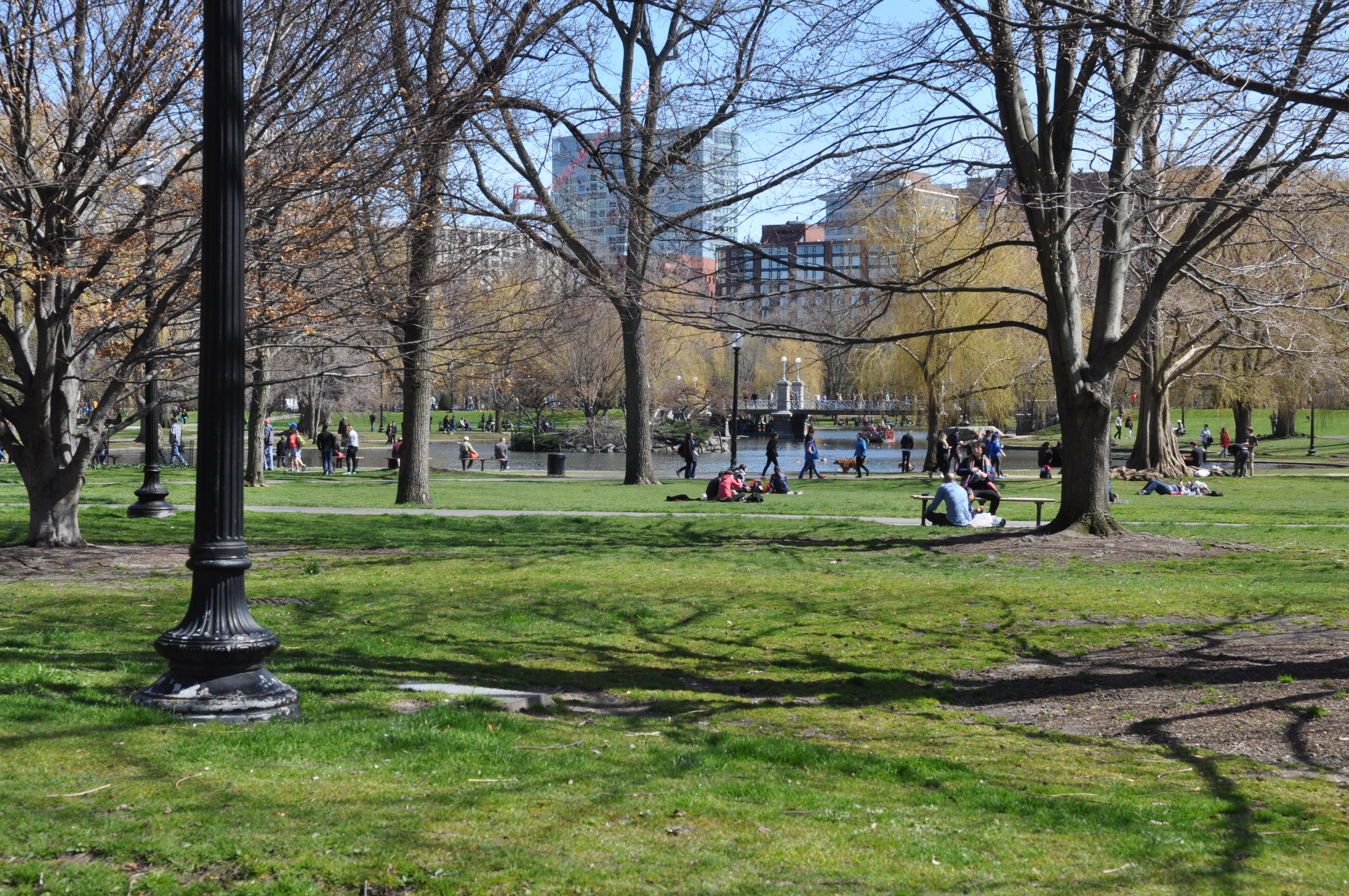 Public garden in Boston