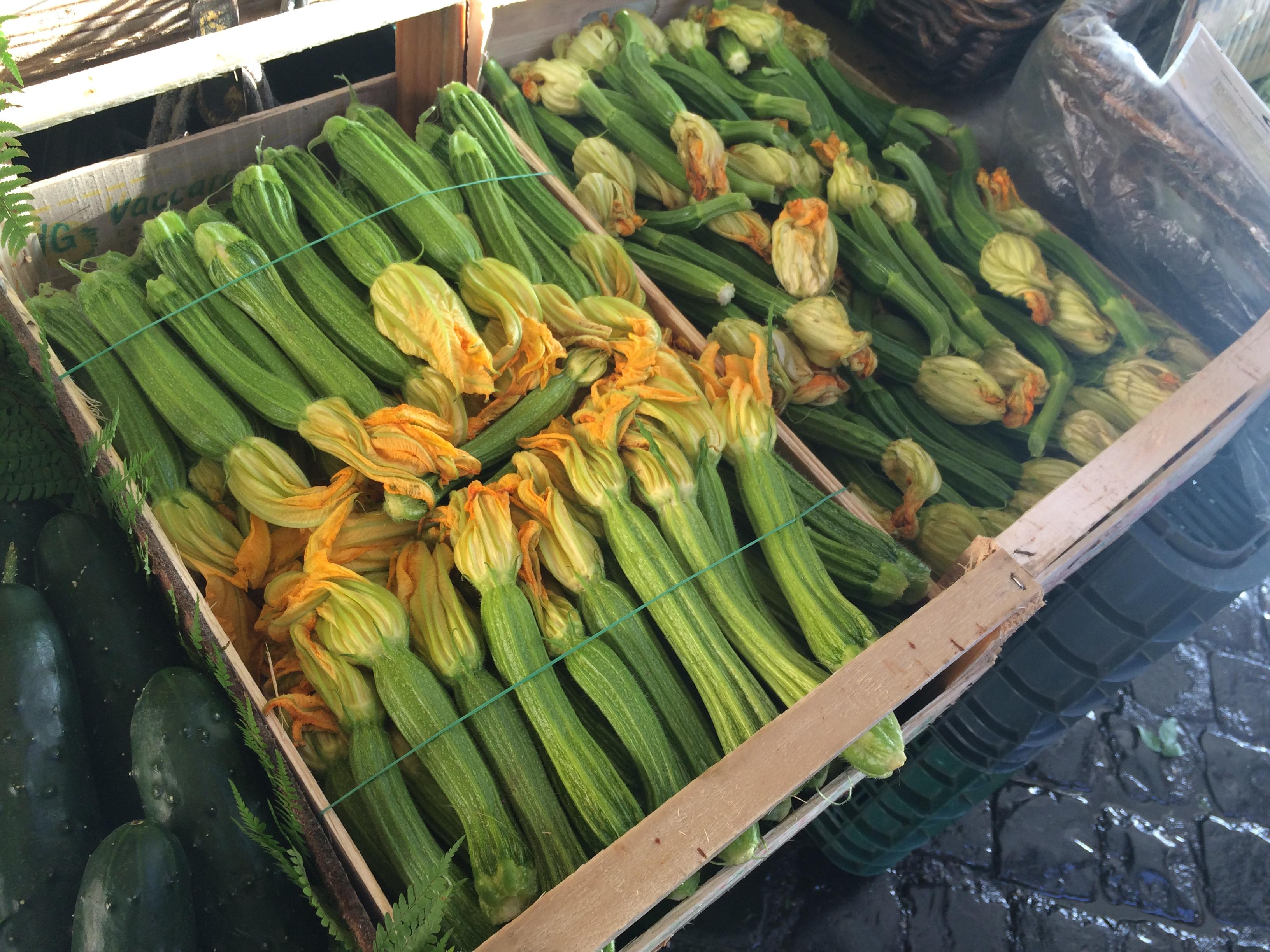 Zucchini Blüten