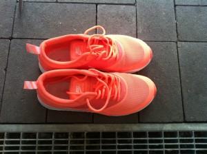 Nike Free Run sauber kriegen